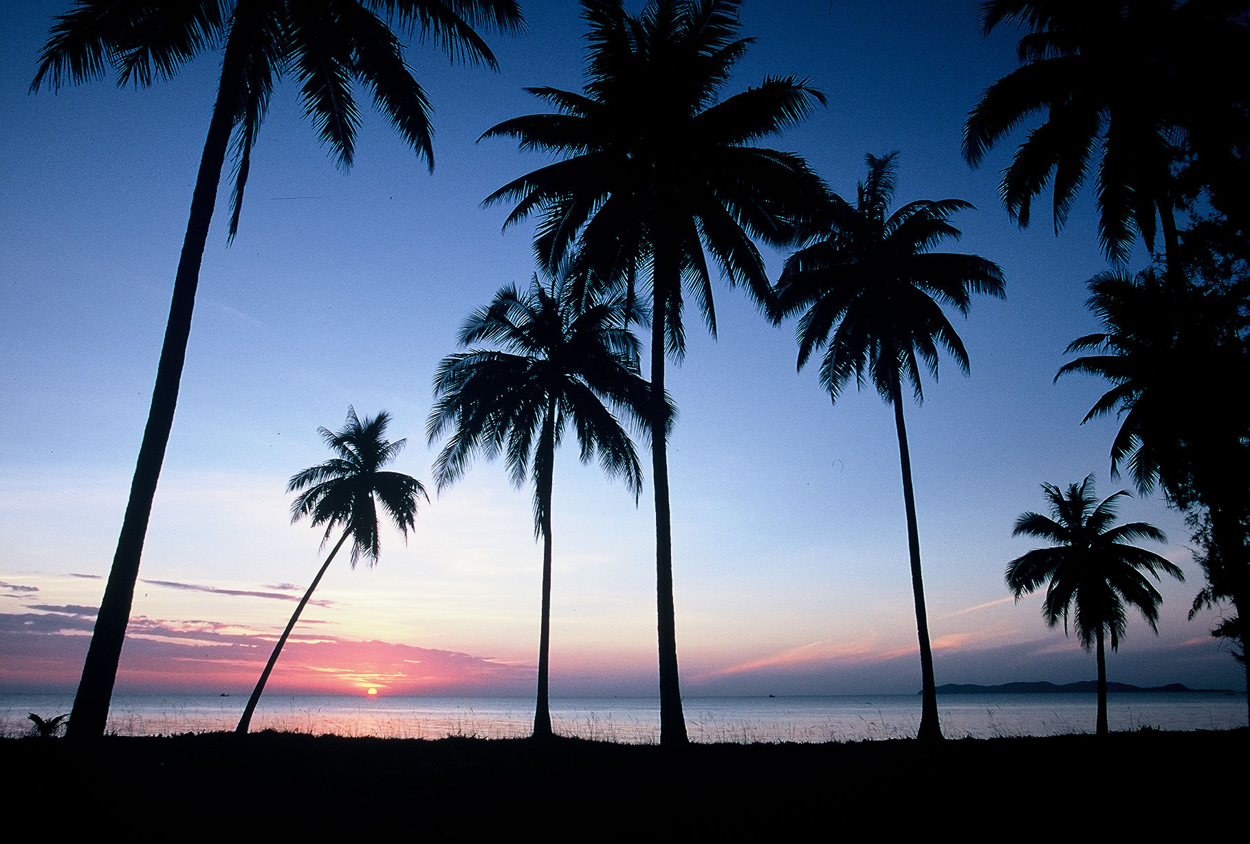 Overnight 2 days 1 night at Koh Talu ( HHO/24 )