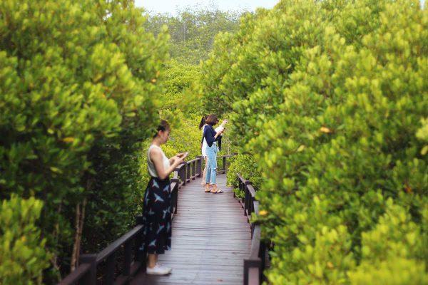 pranburi-forestpark-huahin
